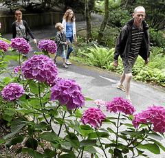 Urrugne un parc entre cologie et solidarit le journal for Entretien jardin urrugne